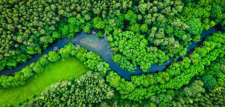 An aerial shot of the Amazon River in South America